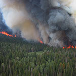 What is the connection between climate change and wildfires